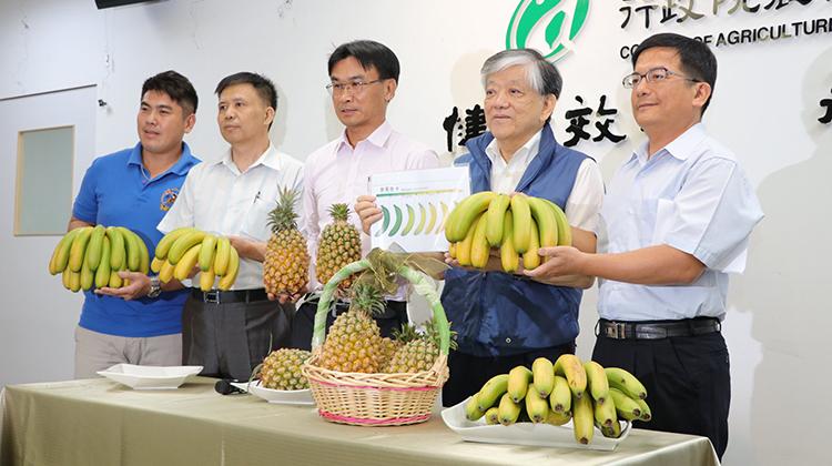 香蕉你個鳳梨