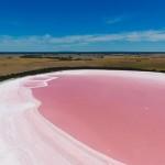 澳大利亞粉紅湖之謎