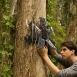 非營利組織使用舊手機拯救熱帶雨林