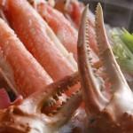內行人都吃公蟹?從挑到煮跟著漁人秋蟹攻略走,今年秋天升級蟹料理達人