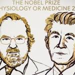 諾貝爾醫學獎出爐,美、日兩學者發現免疫細胞的「煞車」,突破癌症療法