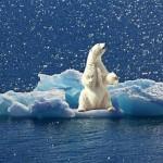 氣候變遷下的投資策略