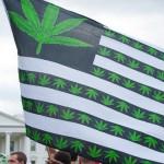 為何美國那麼多公民支持大麻合法化?