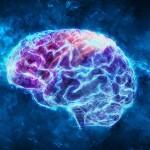 AI 已經可以從腦電波中直接解碼詞語