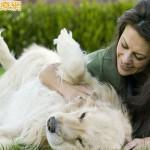 狂犬病疫苗限制解除 醫:貓狗咬傷風險低