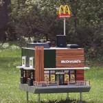 世界最小麥當勞在瑞典,沒有漢堡只有成群小蜜蜂