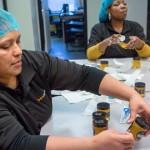 更生人的新工作--養蜂人