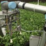 機器人農夫來了!