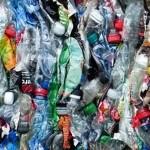 科學界新發現:專吃有毒塑膠的細菌