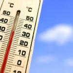 2020年恐破史上最熱紀錄