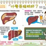 什麼是脂肪肝