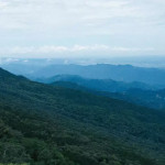 【報橘專訪】雲海、柳杉林、台車軌道!體驗玩家:迷人小百岳「加里山」沒你想得簡單