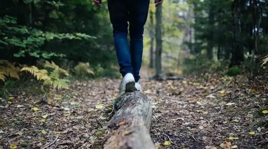【休息不對,反而更累】專訪腦神經科醫師鄭淳予:想讓大腦高效休息,就走進森林裡