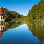 【拉開 9 公里「防天敵」長城】紐西蘭動物保護區 Zealandia 開大絕!要讓人真的「活在大自然」裡