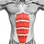 腰酸背痛? 你缺少核心訓練。