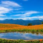 【開車才能到的絕美景點】精選3個「療癒放鬆」的自然景點:花蓮六十石山、基隆望幽谷、新北鱷魚島